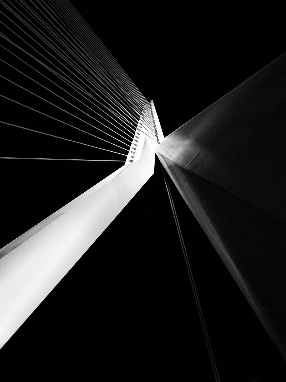 Alan Humphries: De Zwan